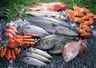 上盘海鲜0192,上盘海鲜,饮食水果,各种鱼