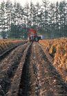丰收写实0156,丰收写实,饮食水果,农业机器