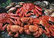 新鲜渔获0199,新鲜渔获,饮食水果,精品海鲜
