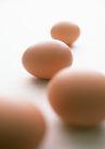 新鲜肉品蛋0151,新鲜肉品蛋,饮食水果,