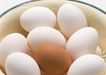 新鲜肉品蛋0157,新鲜肉品蛋,饮食水果,