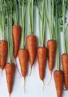 新鲜蔬菜0170,新鲜蔬菜,饮食水果,一些红萝卜
