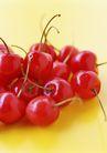 糖果及甜点0169,糖果及甜点,饮食水果,