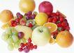糖果及甜点0195,糖果及甜点,饮食水果,