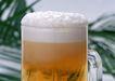 食物与器皿0181,食物与器皿,饮食水果,啤酒 酒花