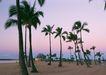 夏威夷0163,夏威夷,生活方式,海边的树木
