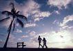 夏威夷0164,夏威夷,生活方式,落日