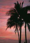 夏威夷0187,夏威夷,生活方式,晚霞 夏威夷风光