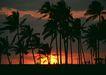 夏威夷0189,夏威夷,生活方式,暮色