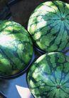夏日清凉0145,夏日清凉,生活方式,几个西瓜