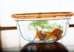 夏日清凉0158,夏日清凉,生活方式,鱼缸里的金鱼