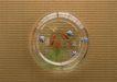 夏日清凉0162,夏日清凉,生活方式,一个鱼缸