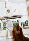 家有宠物0044,家有宠物,生活方式,黄色家犬