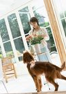 家有宠物0053,家有宠物,生活方式,女主人 宠物狗 花盆