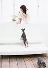 家有宠物0058,家有宠物,生活方式,坐在窗台上 两条狗狗 披发女子