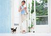 家有宠物0067,家有宠物,生活方式,可爱的狗狗
