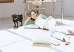 家有宠物0076,家有宠物,生活方式,星期天 光线 家具