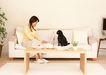 家有宠物0084,家有宠物,生活方式,长沙发
