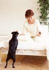 家有宠物0092,家有宠物,生活方式,床铺 书本 看书