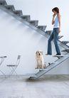 家有宠物0102,家有宠物,生活方式,下楼 台阶 听电话