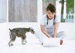 家有宠物0119,家有宠物,生活方式,在家上网
