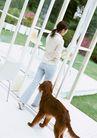 家有宠物0131,家有宠物,生活方式,大狗尾随