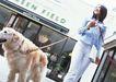 家有宠物0141,家有宠物,生活方式,牵着狗