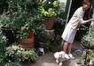 家有宠物0172,家有宠物,生活方式,少妇 锁门 花盆