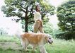 家有宠物0178,家有宠物,生活方式,忠实 大树 散步