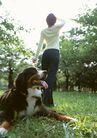 家有宠物0184,家有宠物,生活方式,踏春