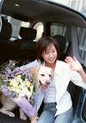 家有宠物0189,家有宠物,生活方式,鲜花