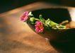 惬意风情0162,惬意风情,生活方式,两朵小花