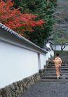 日式生活礼俗0143,日式生活礼俗,生活方式,