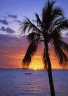 海上度假0242,海上度假,生活方式,