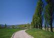 道路美景0158,道路美景,交通,弯路