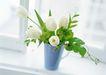 花的彩绘0190,花的彩绘,植物,装饰物 花艺