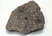 化石0158,化石,静物,化石图片