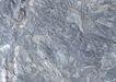 化石0190,化石,静物,斑纹