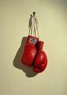 运动用品0198,运动用品,静物,红色拳套