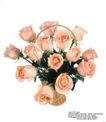 玫瑰花束0060,玫瑰花束,鲜花,