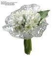 百合花0025,百合花,鲜花,