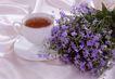 茶与咖啡0024,茶与咖啡,水果食品,紫色小花