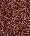 茶与咖啡0063,茶与咖啡,水果食品,咖啡豆