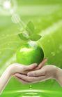 人物风景0133,人物风景,韩国设计元素,手心 苹果 叶子