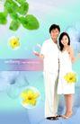 健美0006,健美,韩国设计元素,夫妻 枝叶 设计
