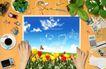 桌面书签0047,桌面书签,韩国设计元素,郁金香 蓝天 背景