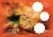 浪漫柔情0391,浪漫柔情,浪漫柔情写真模板,