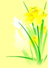 花卉0007,花卉,底纹背景,