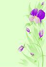 花卉0019,花卉,底纹背景,
