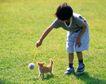 儿童宠物0049,儿童宠物,儿童,和宠物玩耍